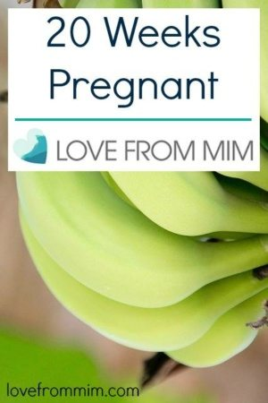 20 Weeks Pregnant - www.lovefrommim.com 20 Week Pregnancy Update Pregnancy Symptoms Pregnancy Week by Week
