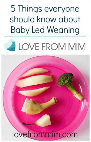 5 Things everyone should know about Baby Led Weaning by What the Redhead Said - lovefrommim.com Baby Led Weaning First Foods How to do Baby Led Weaning