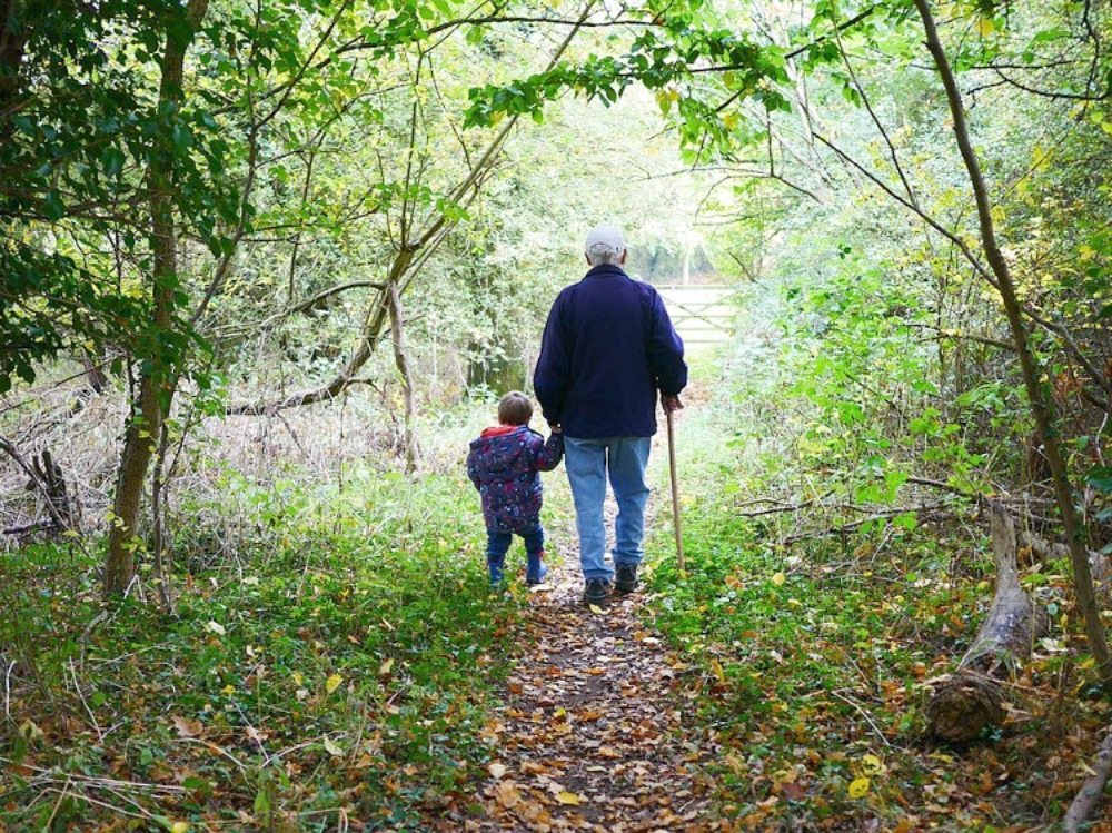 Grandfather walking with Grandson